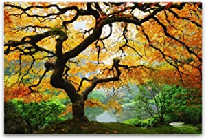 Startonight Glass Wall Art Acrylic Decor Maple Tree, Nature USA Design for Home Decor Dual View Surprise Artwork Modern Framed Ready to Hang Wall Art 23.62 X 35.43 Inch