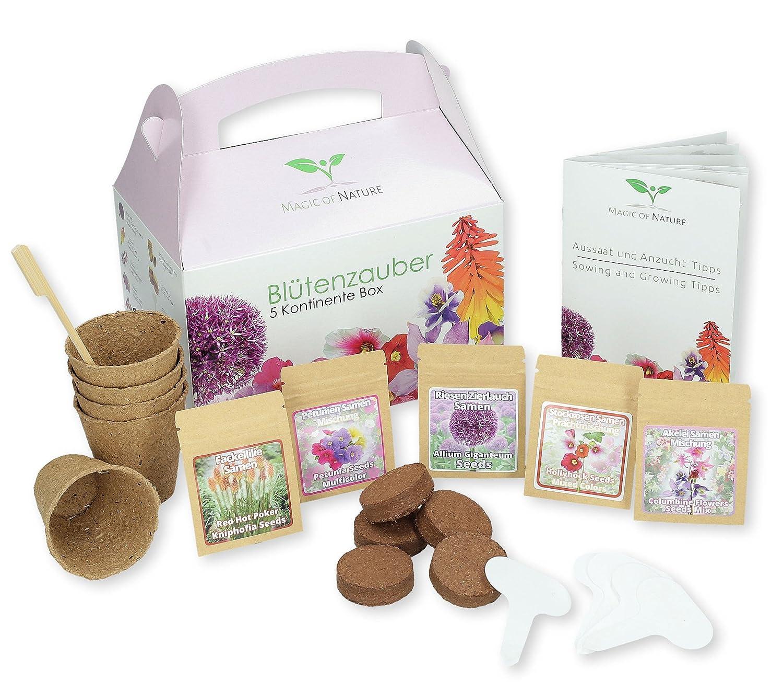 Geschenk Anzuchtset: Blütenzauber 5 Kontinente Box - zum Selberzüchten oder zum Verschenken - eine originelle Geschenkidee für praktisch jeden Anlass SIS Internethandel