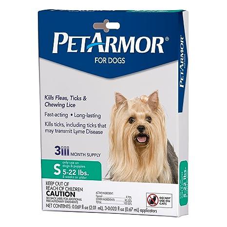 Amazoncom Petarmor For Dogs Flea And Tick Treatment For Small