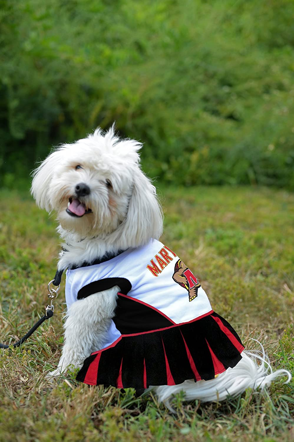 Pets First Maryland Terrapins Cheerleading Outfit