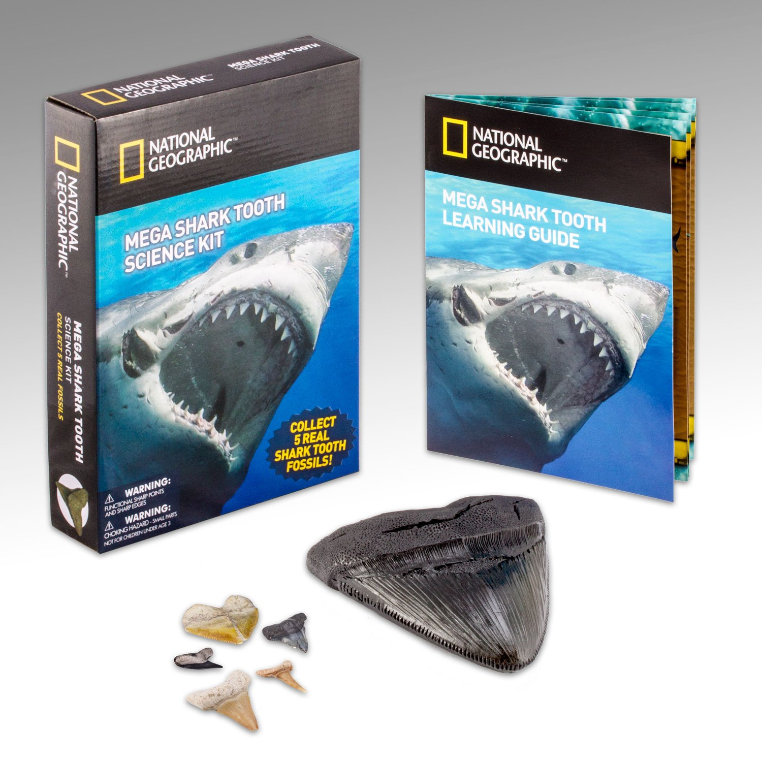 amazon com national geographic mega shark tooth science collect 5