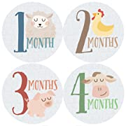 Monthly Baby Stickers, Farm, Animals, Baby Gift, Milestone Stickers