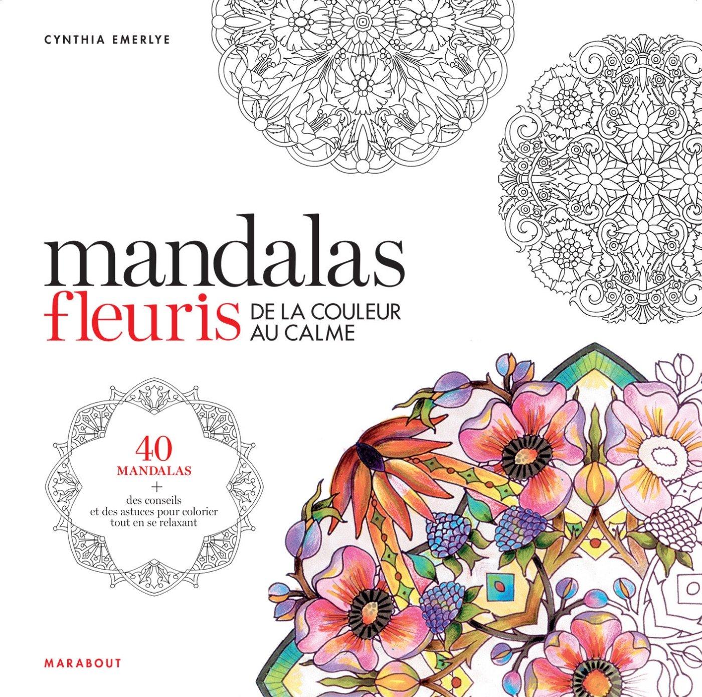 Coloriage Mandala Couleur.Coloriage Mandalas Fleuris De La Couleur Au Calme Amazon Ca