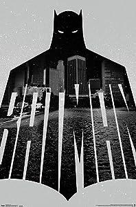 Trends International Batman-Text Premium Wall Poster, 22.375