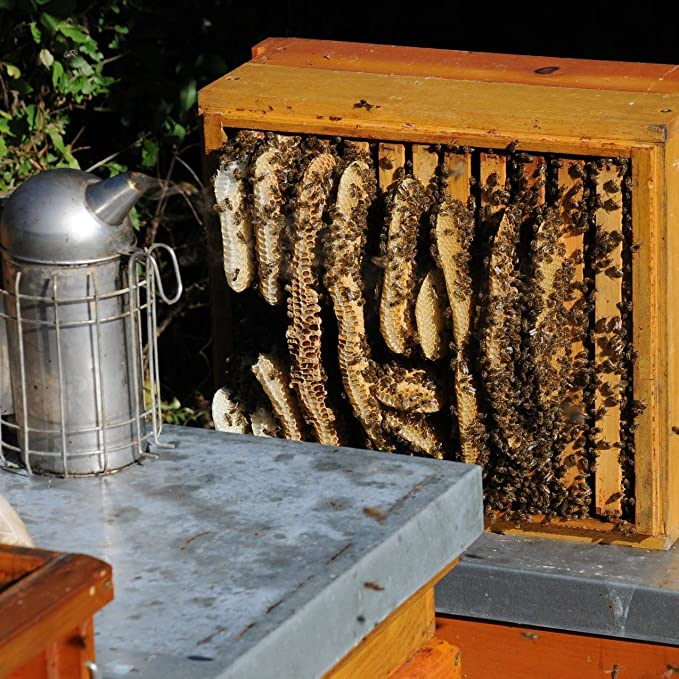 Miel cruda de ImkerPur, 400 g, sin filtrar, no centrifugada o ...
