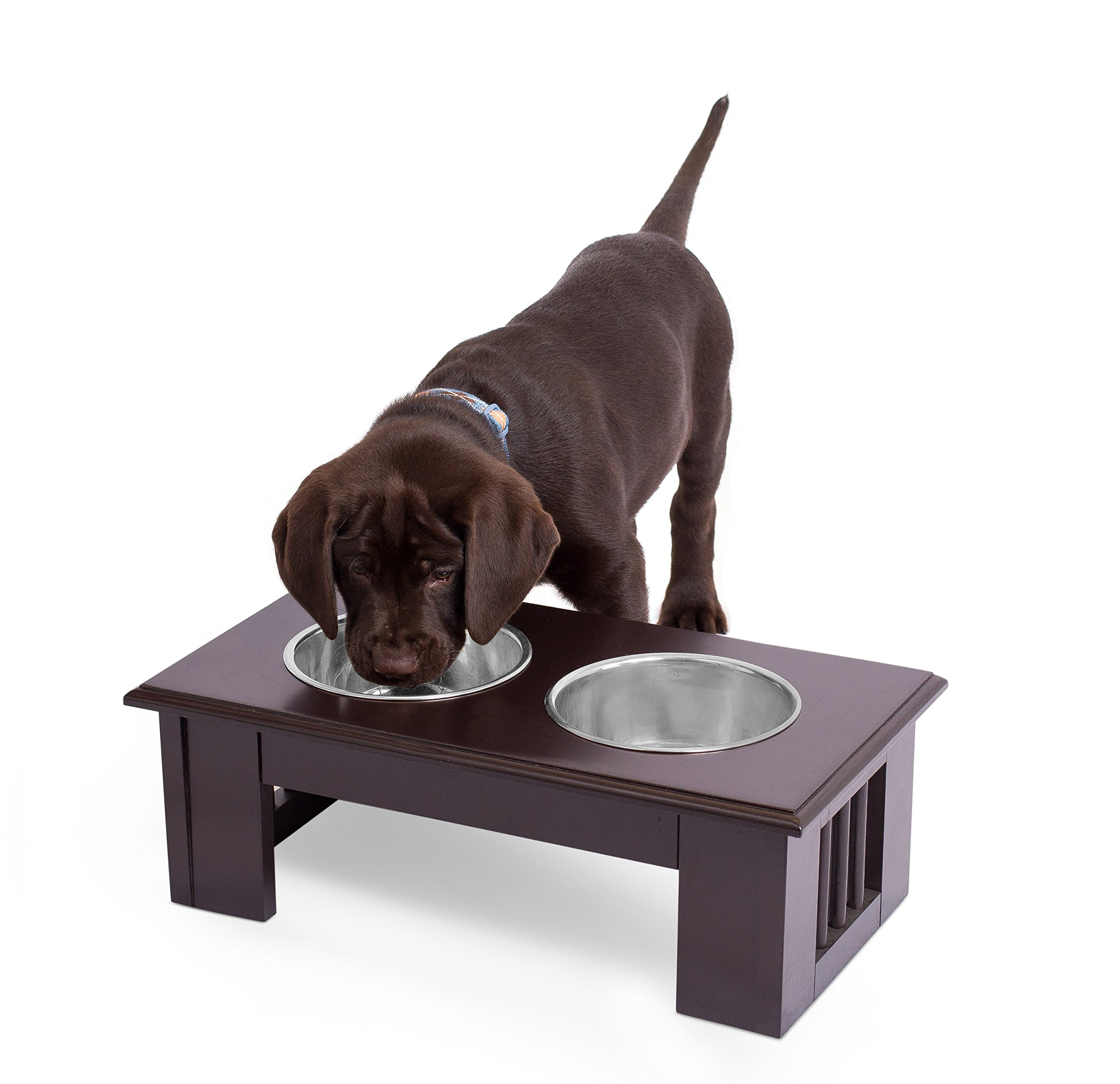 Internet's Best Traditional Elevated Pet Feeder | 2 Small Dog Food Water Bowls | Designer Decorative Raised Stand with Double Stainless Steel Bowls | Espresso