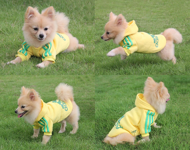 M, Gris//Amarillo Mascota Cachorro Gato algod/ón Lindo c/álido Sudadera con Capucha su/éter QiCheng/&LYS Adidog Dog Hoodie Ropa