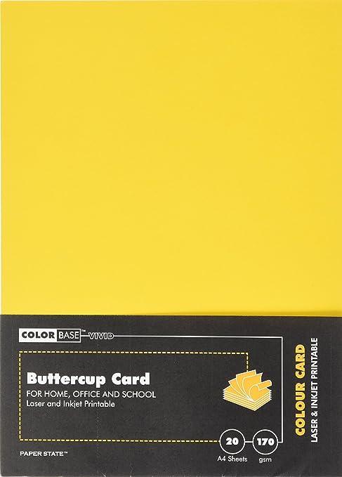 Amazon.com: Base de color 170 g/m2 tarjeta (paquete de 20 ...