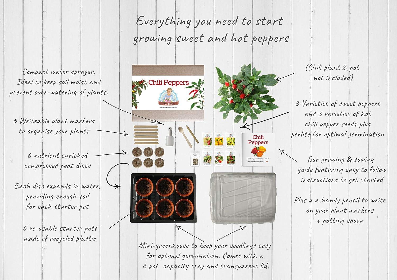 Paprika Das ideale Geschenk f/ür alle Hobby-K/öche mit scharfen und milden Paprika. Mrs Henri/'s Plant Growing Kit Z/üchten Sie 6 leckere Paprikasorten aus Samen