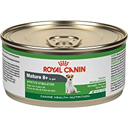 Royal Canin Canine Health Nutrition Mature 8+ in Gel Canned Senior Dog Food