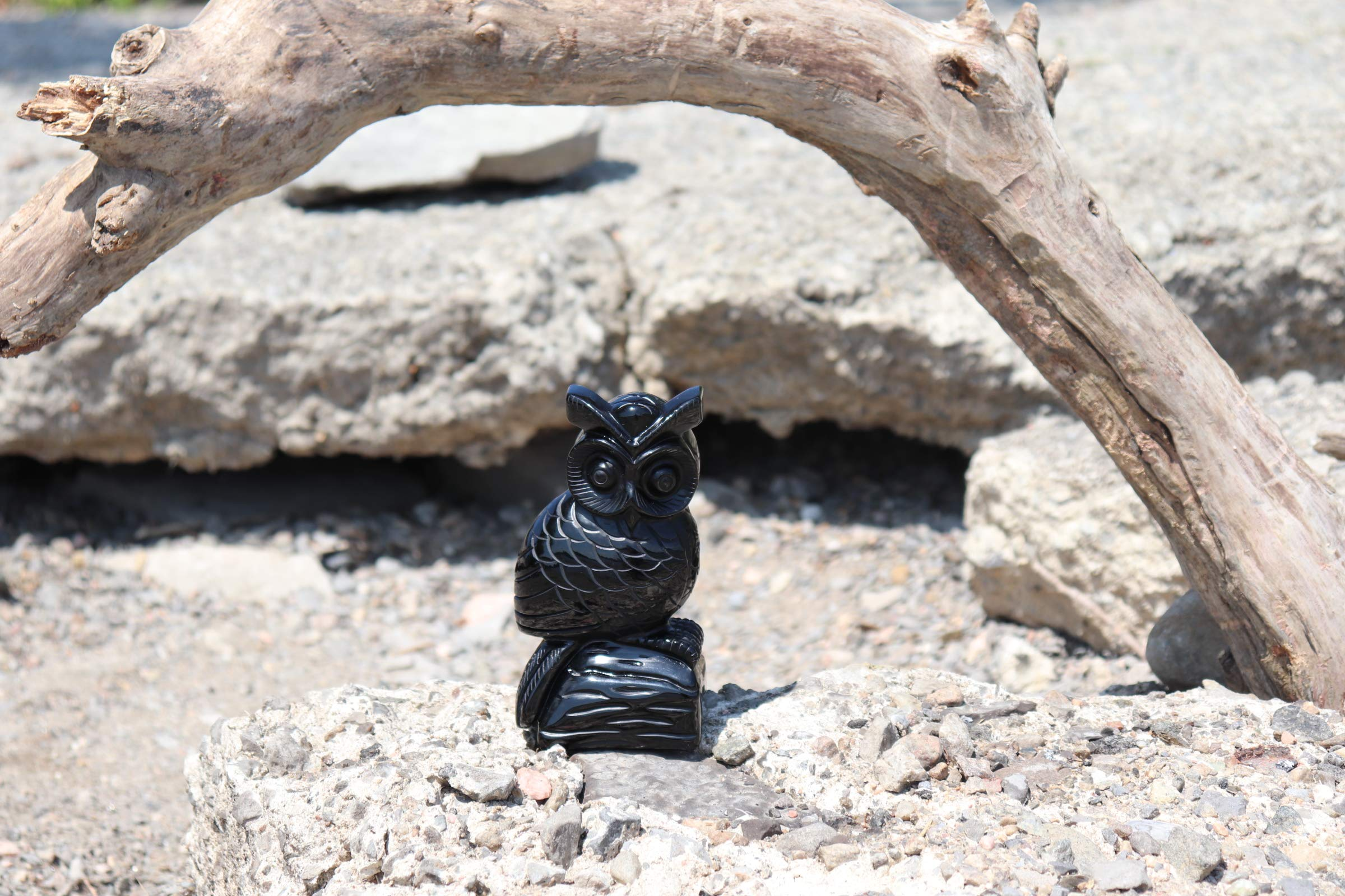 Obsidian Owl Carving