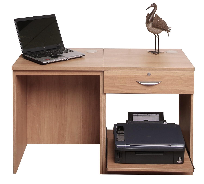 Desks For Laptops And Printer Hostgarcia
