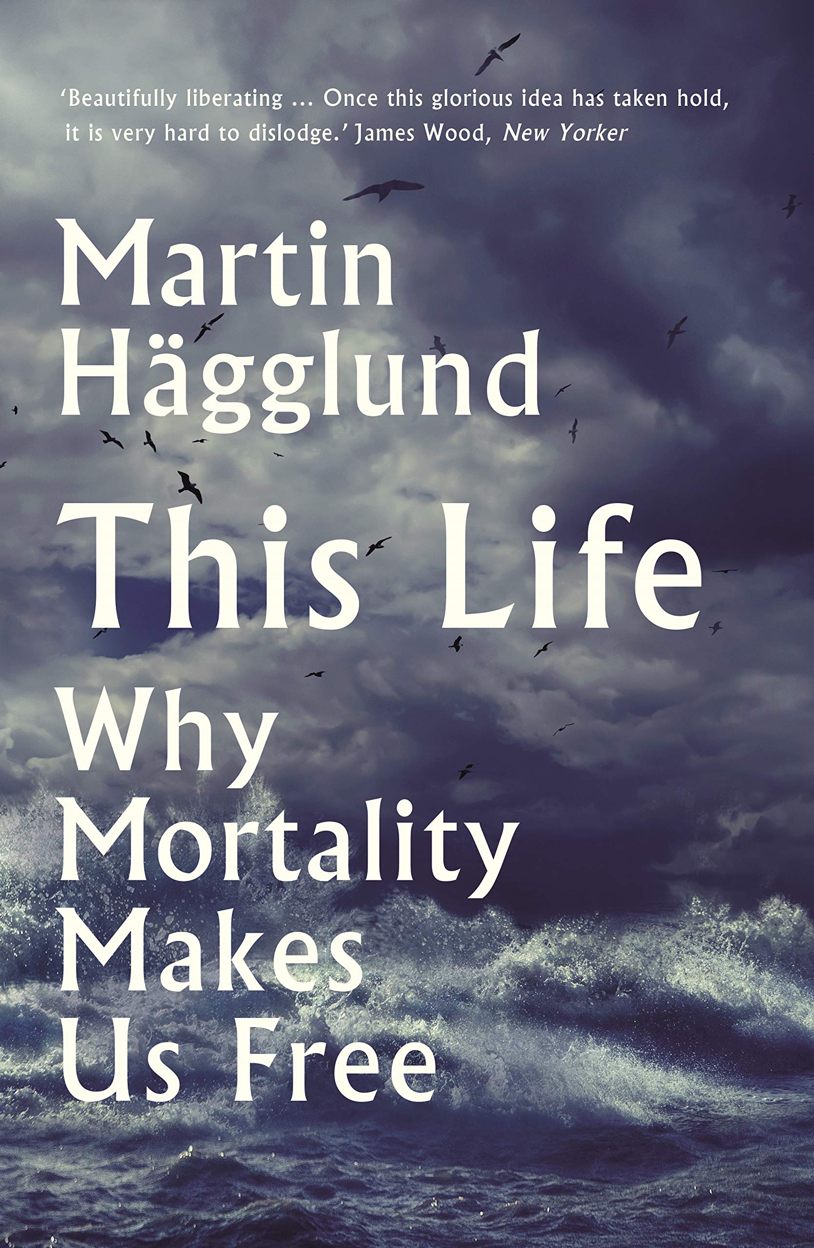 This Life: Why Mortality Makes Us Free: Hägglund, Martin: 9781788163002:  Amazon.com: Books