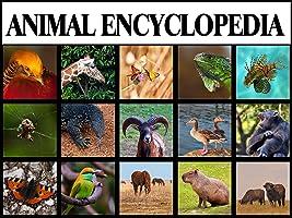 Animal Encyclopedia