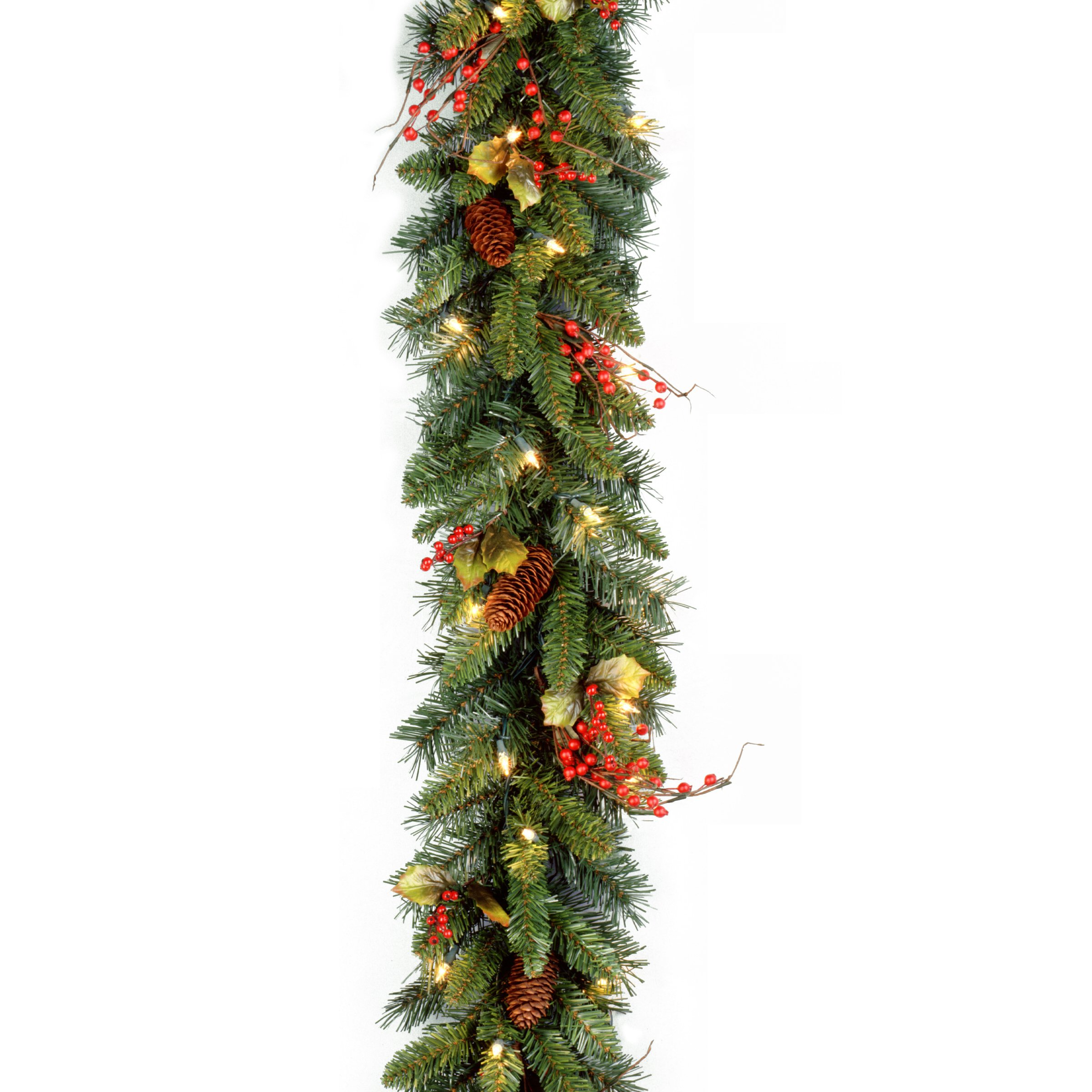 National Tree 9 Foot by 10 Inch Classical Collection Garland with Cones, Holly Leaves, Red Berries and 50 Clear Lights (CC1-301-9A-1)