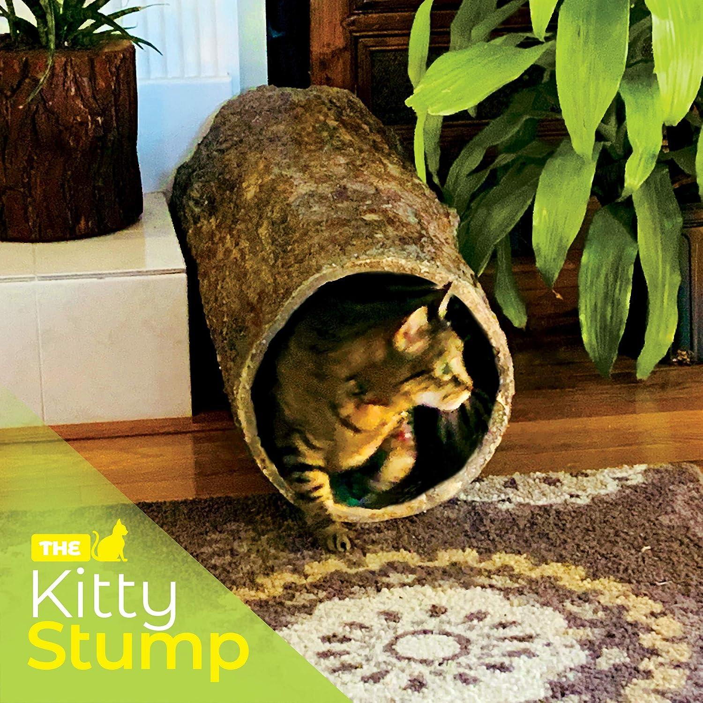 Kitty Stump