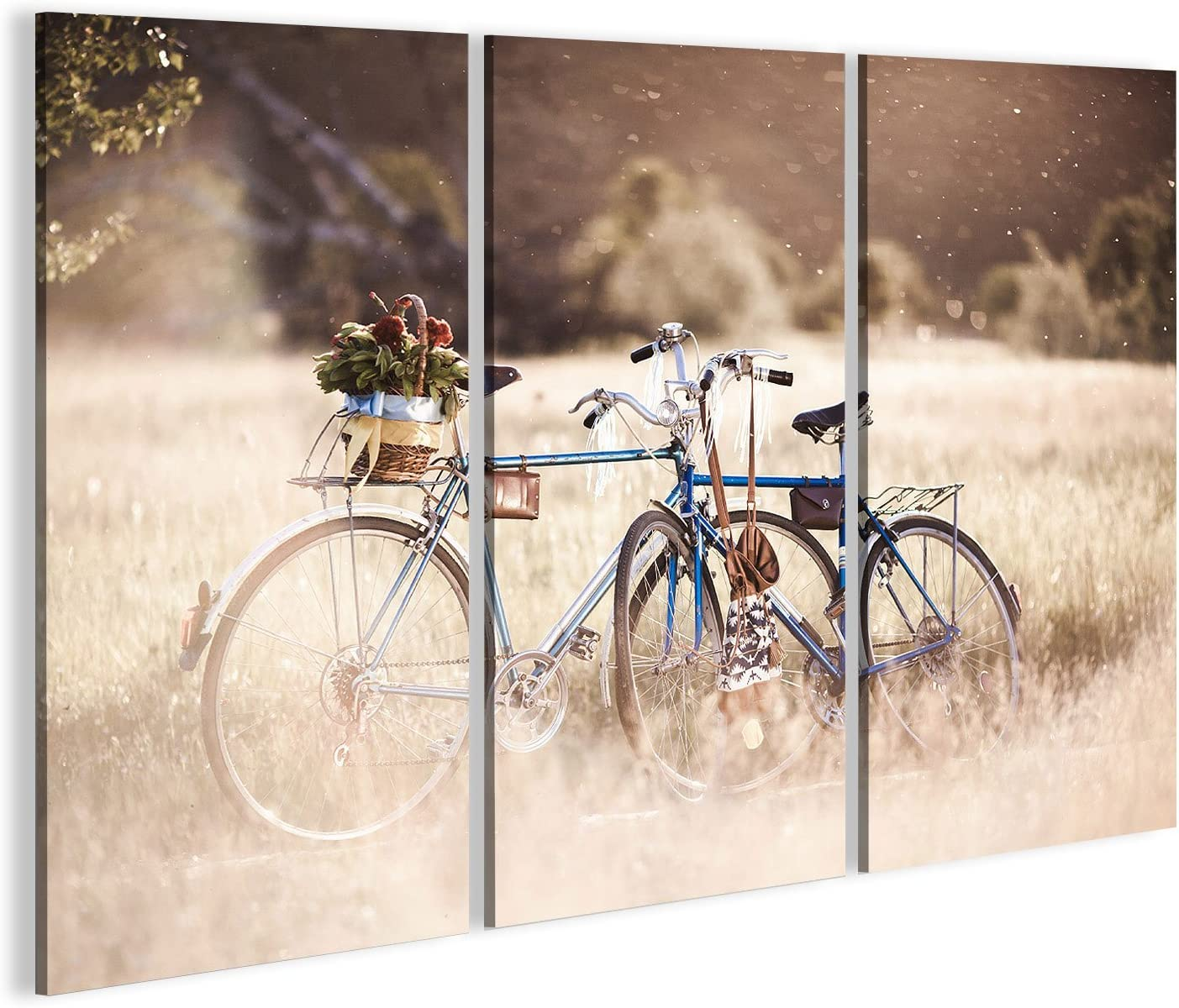 islandburner Cuadro Cuadros Hermosa Foto de Paisaje con Bicicleta ...