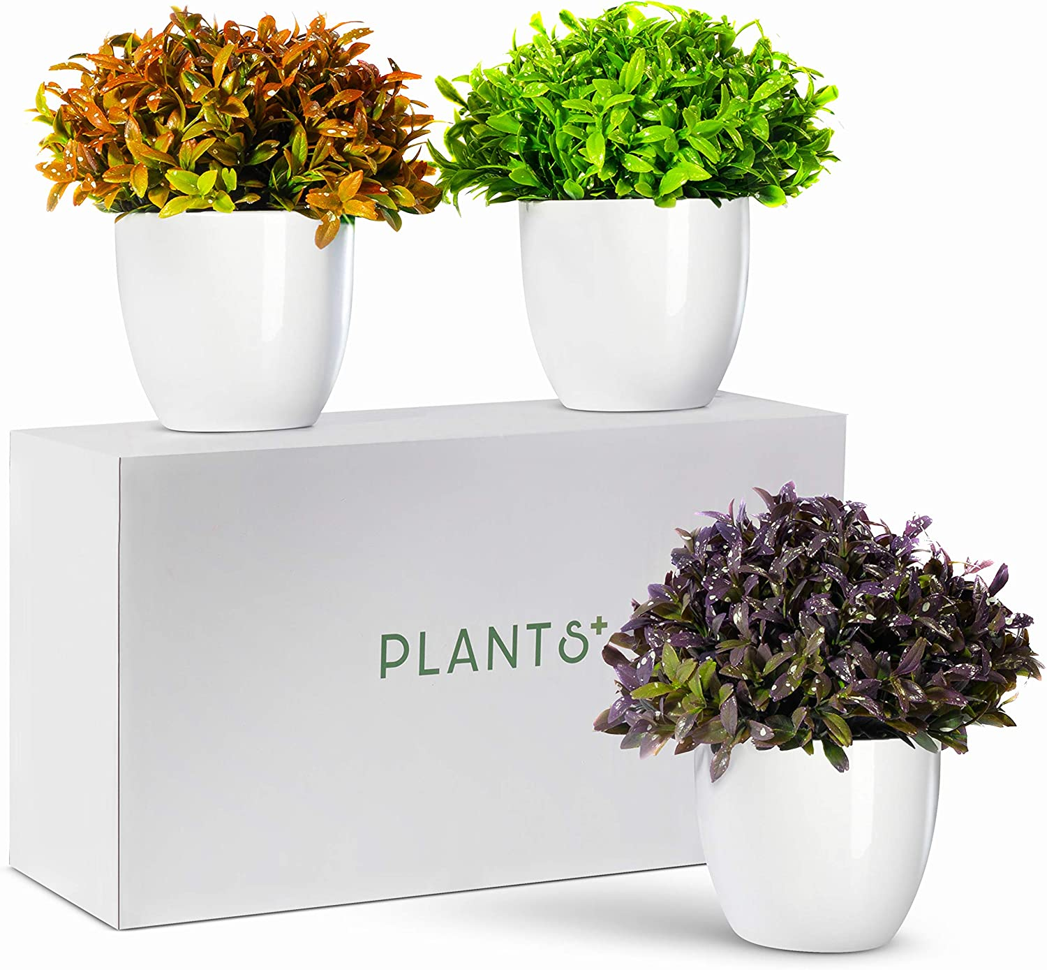 Plants+ Artificial Fake Faux Indoor House Desk Office Plant for Decoration - Plastic Lifelike Flower with White Pot, Outdoor Decor Topiary Greenery, Set of 3, Spring Bloom -