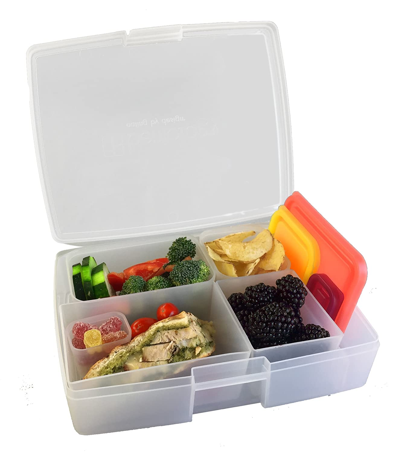 Amazon.com: Bentology - Leak-proof Bento Lunch Box with 5 Removable ...