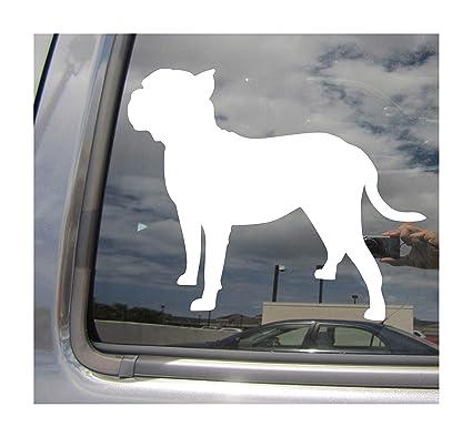 Amazon com: - Perro de Presa Canario Dog - Canary Mastiff