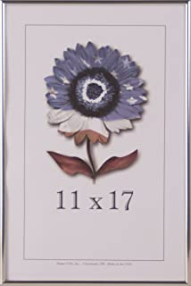 product image for Frame USA Metal 1 Series 11x17 Frames for Photos and Art (Silver)