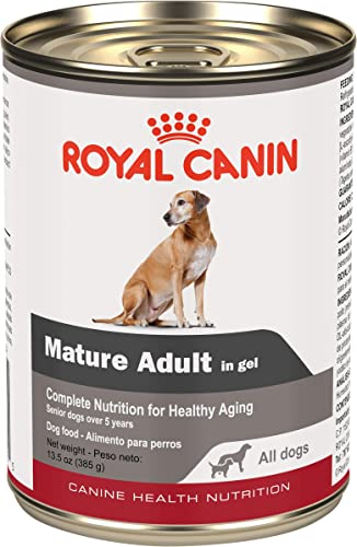 Royal Canin Canine Health Nutrition Mature Adult In Gel Canned Dog Food, 13.5 oz Can Case of 12