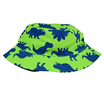 542c6b3e Amazon.com: Little Me Reversible Green and Blue Dinosaur Toddler ...