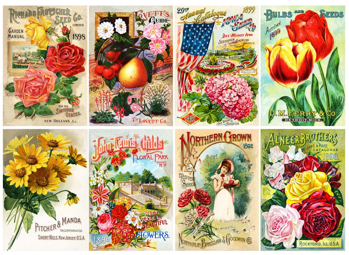 Amazon com large stickers each sticker 2 5x3 5 pack 8 pcs flowers vintage seed packets flonz illustrations drawings