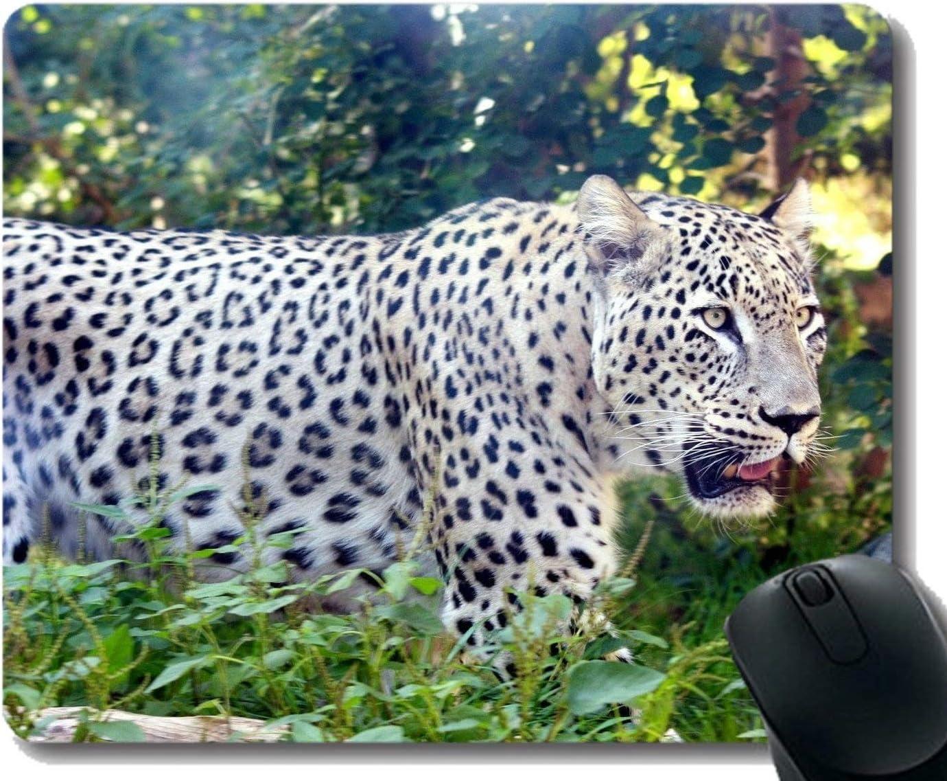 Yanteng Rectangle Mouse Pads para computadoras Laptop, Cat, Leopard, Tiger Mousepad Antideslizante de Goma