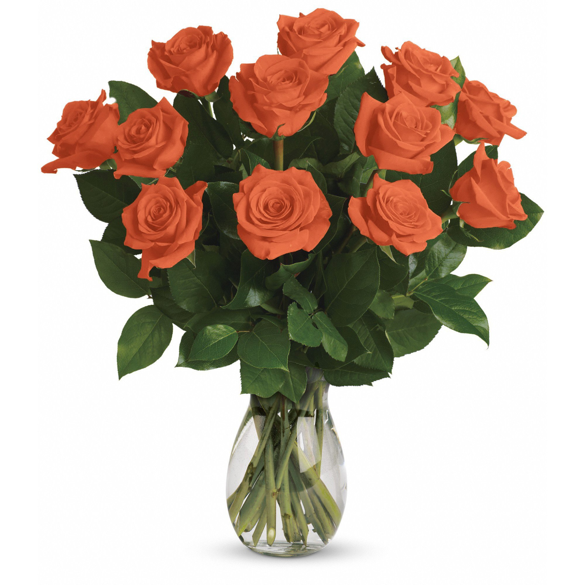 Farm Direct Rose Bouquet of 12 Fresh Cut Roses with Vase (Orange)