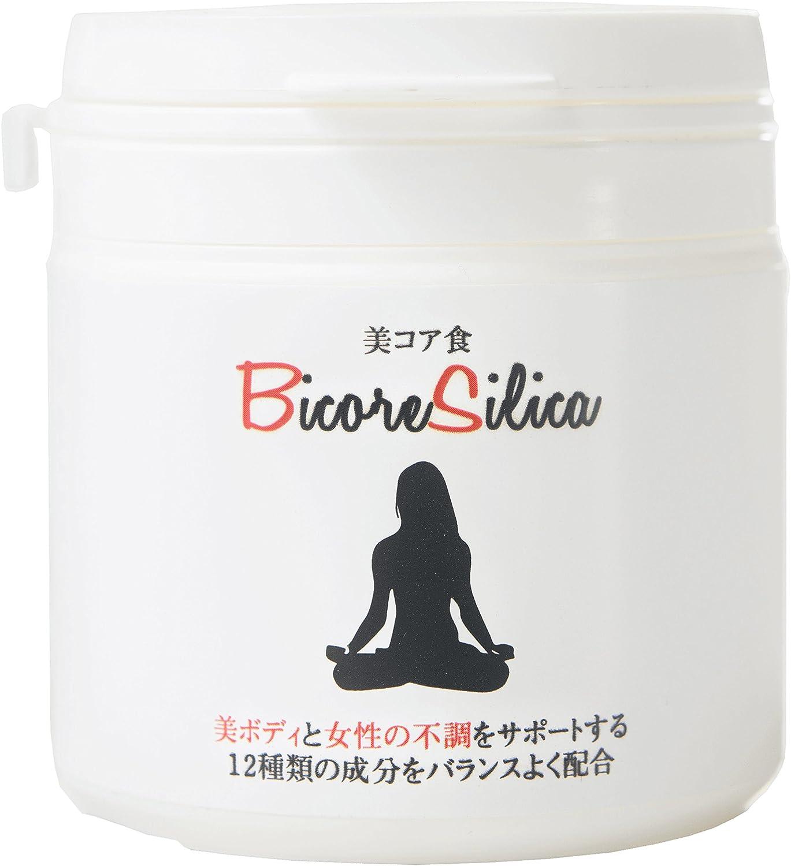 美コアシリカ BICORE SILICA 【正規販売店】 B07D8HB42L