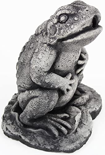 Forest Frog Home and Garden Statues Toad Concrete Figure