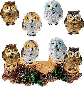 Jetec 9 Pieces Fairy Garden Owls with Stumps Resin Mini Owls Miniature Figurines Fairy Garden Accessories Fairy Garden Animals for Garden Dollhouse Potted Plant Bonsai Craft Decor