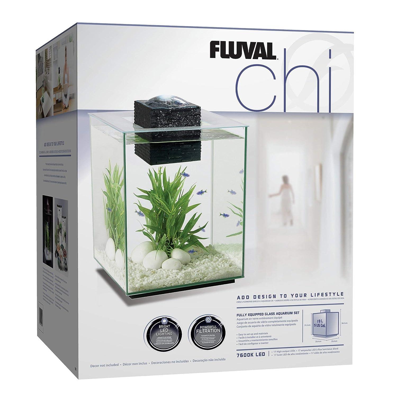Fluval Acuario Chi Ii Mini, 19 Litros Hagen España 10505