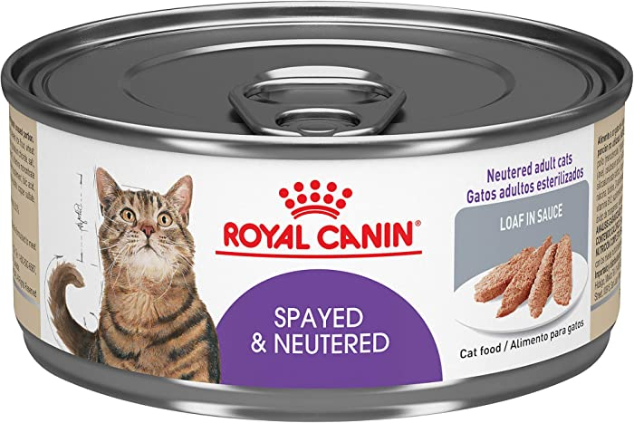 The Best Cat Food Royal Canin Spay