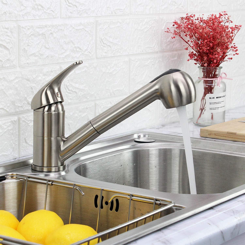 GOOAO - Grifo de cocina con placa de cubierta, níquel cepillado ...