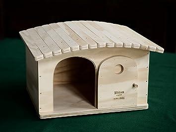 Gina tamaños M, casas para gatos Profesional y rascadores Blitzen Original made in Italy 100%: Amazon.es: Hogar