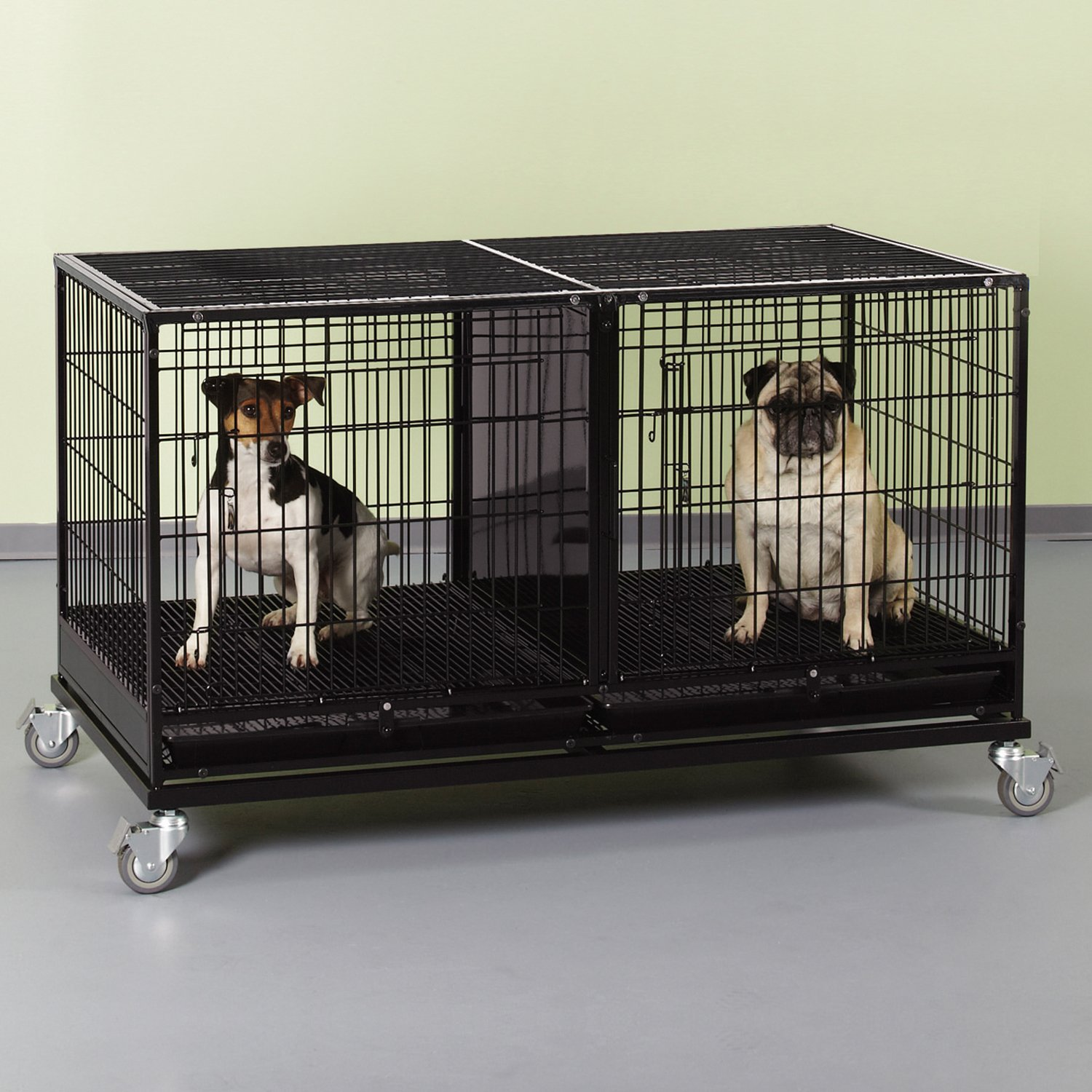 Amazon.com : ProSelect Steel Modular Cage with Plastic Tray, Black ...