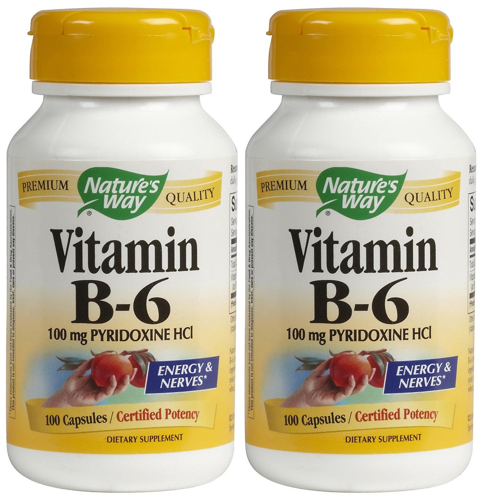 Nature's Way Vitamin B6 100 mg Caps, 2 Pack