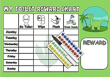 potty training chart boys