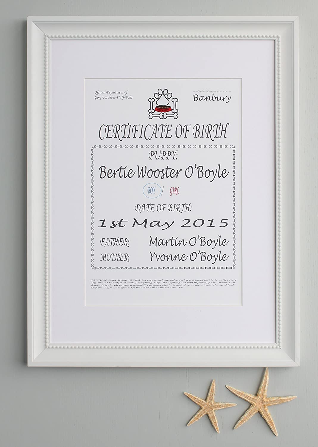 This is an image of Printable Birth Certificates intended for boy