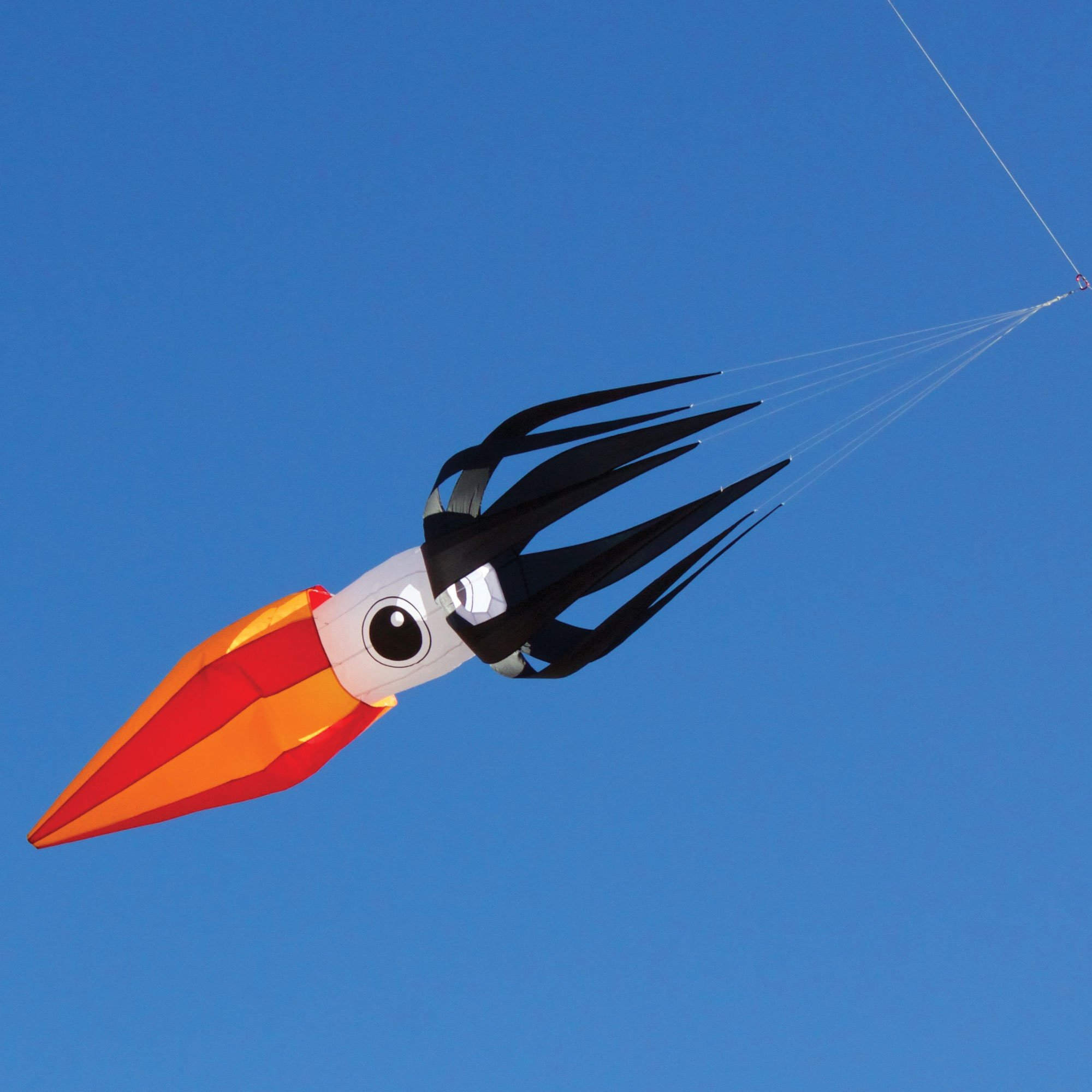 Into The Wind 11-ft Black Flying Squid Kite Line Laundry