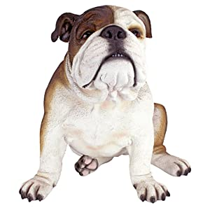 Design Toscano Buster The Bulldog British Decor Garden Statue, 16 Inch, Polyresin, Full Color