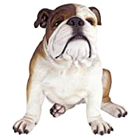Design Toscano Buster the Bulldog British Decor Garden Statue, 41 cm, Polyresin, Full Color
