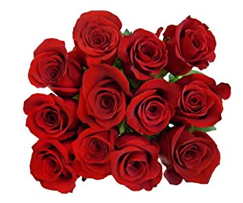 100 Fresh Red Roses | Valentineu0027s Day