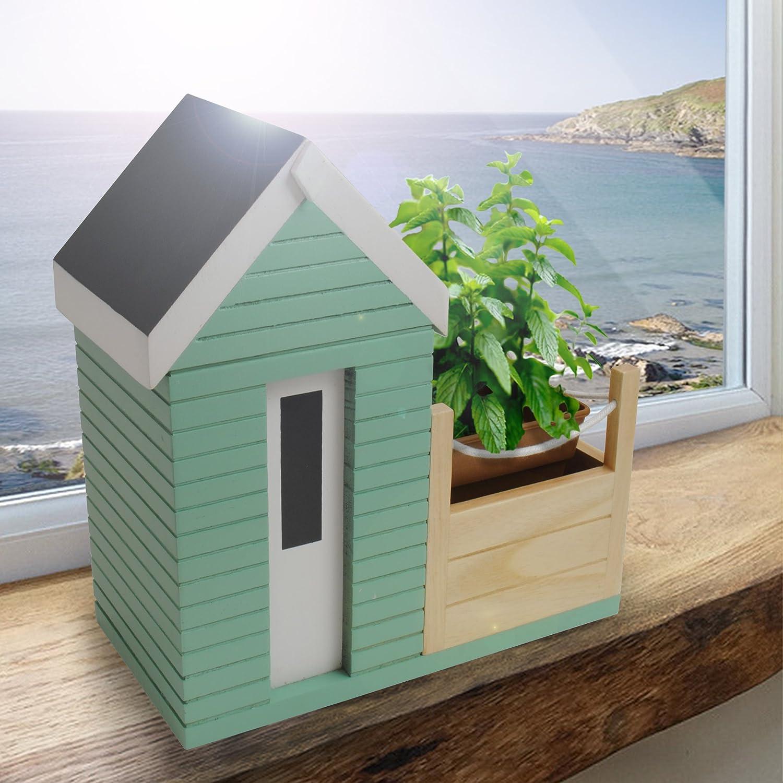 Amazon.com: Bunkerbound Beach Hut Planter Gift Set: Garden & Outdoor