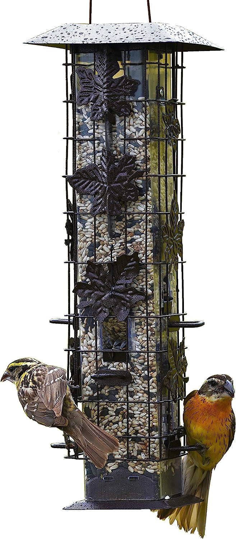 Perky-Pet 336 Squirrel-Be-Gone Wild Bird Feeder – 2 lb : Garden & Outdoor