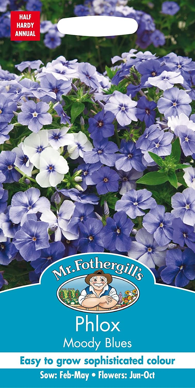 Mr Fothergills Flower Pictorial Packet Phlox Moody Blues -175 Seeds