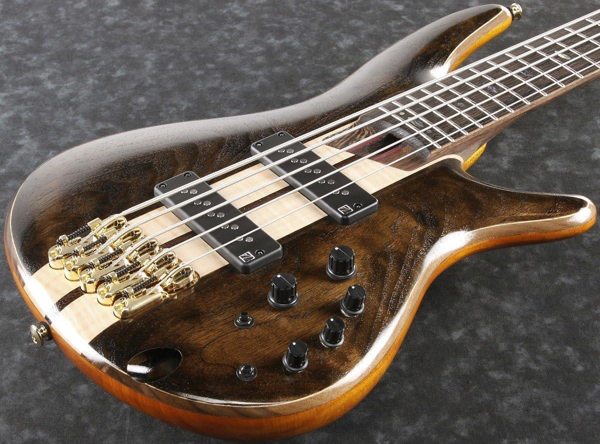 Ibanez 2018 SR1825 - Guitarra eléctrica de bajo: Amazon.es: Instrumentos musicales