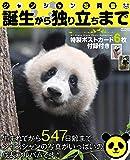 シャンシャン写真集 誕生から独り立ちまで (付録:特製ポストカード6枚) (メディアックスMOOK)